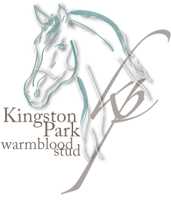 Kingston Park Warmblood Stud